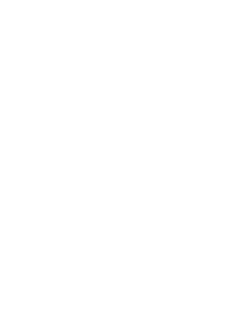 This is the Adinkra symbol 'aya.' The fern represents endurance and resourcefulness, used here to the endurance of Bishop Lawson Porter's passion.